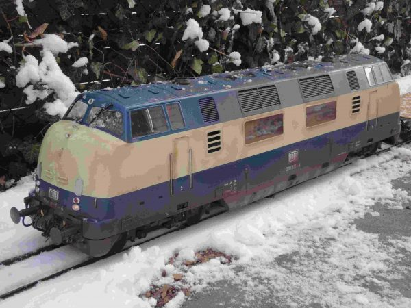 Loco in the snow