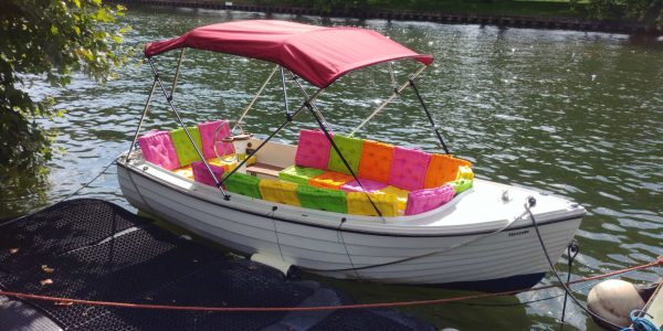 liquid cooled electric boat